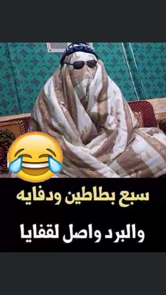 مشاغبات أحمد بكير للقراءه تحت اللحاف