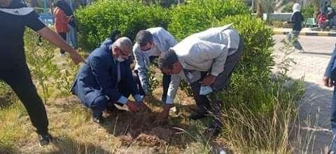 إطلاق مبادرة لزراعة أشجار مثمرة بكلية التربية في الغردقة