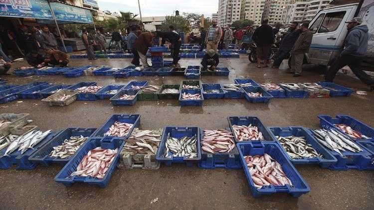 أسماء جديدة للسمك في مصر : الفيروز وبرسيق ولملق