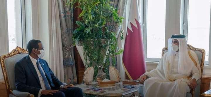 أمير قطر وحميدتي