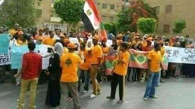 علم مصر يرفرف في قلب إثيوبيا - شوف الحكاية إيه