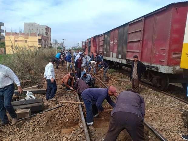 جاموسة عطلت قطار بضائع في الدقهلية.. خرجته عن مساره