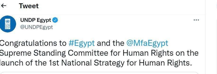 برنامج الأمم المتحدة الإنمائي يهنئ مصر على استراتيجية حقوق الإنسان