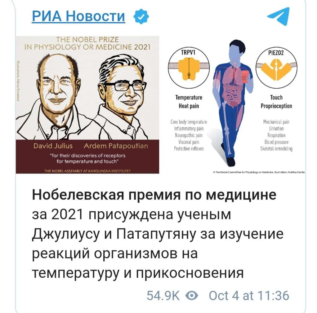 شاهد.. أمريكيان يحرزان جائزة نوبل للطب لعام 2021