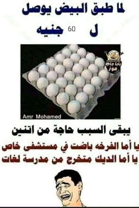 لما طبق البيض يوصل 60 جنيه يبقي الفرخه باضت في مستشفى خاص